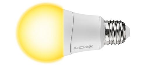 Bulbs & Spots