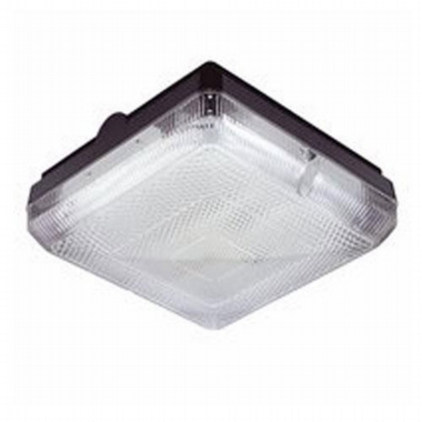 Lediosn 2D Square fitting prismatic diffuser