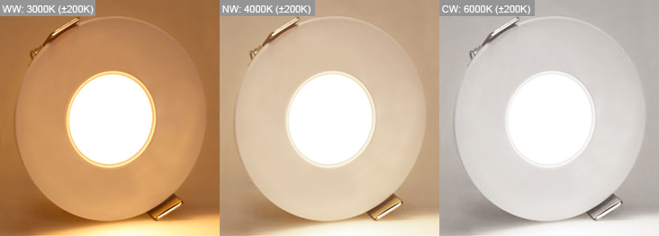 new arrival 5dcee c98cf Fire Rated Downlight 12Watt Tri-Colour. IP65