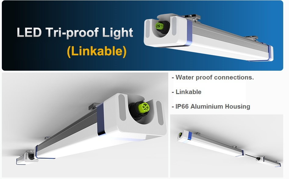 LED Tri-Proof Lights 1